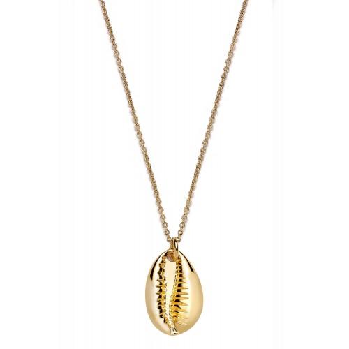 Muschel-Halskette Kauri - 925 Sterlingsilber