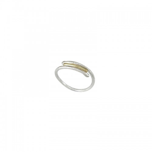 Silber und Gold Ring, Double